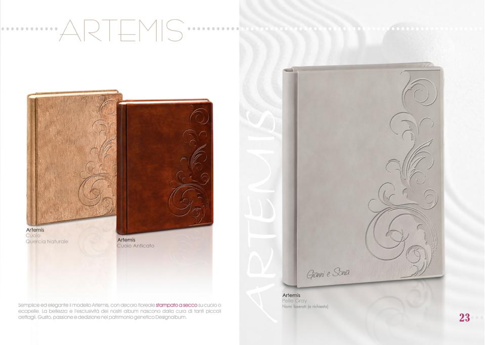 Artemis-01